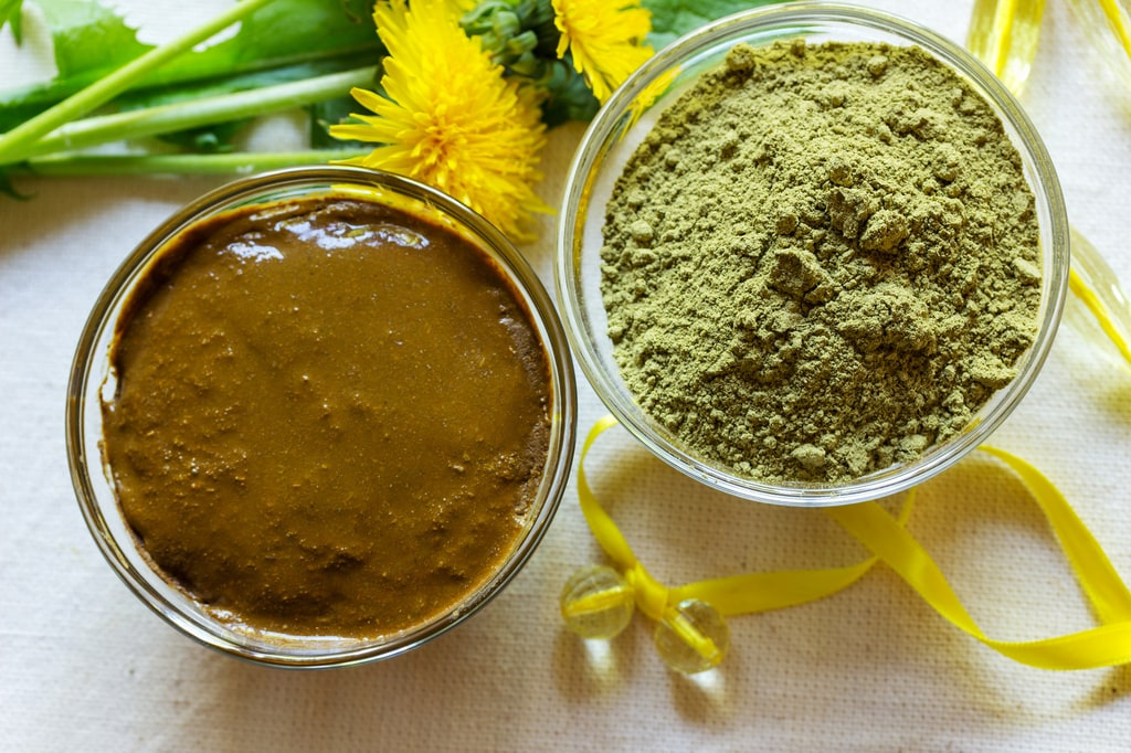 Henna powder and paste